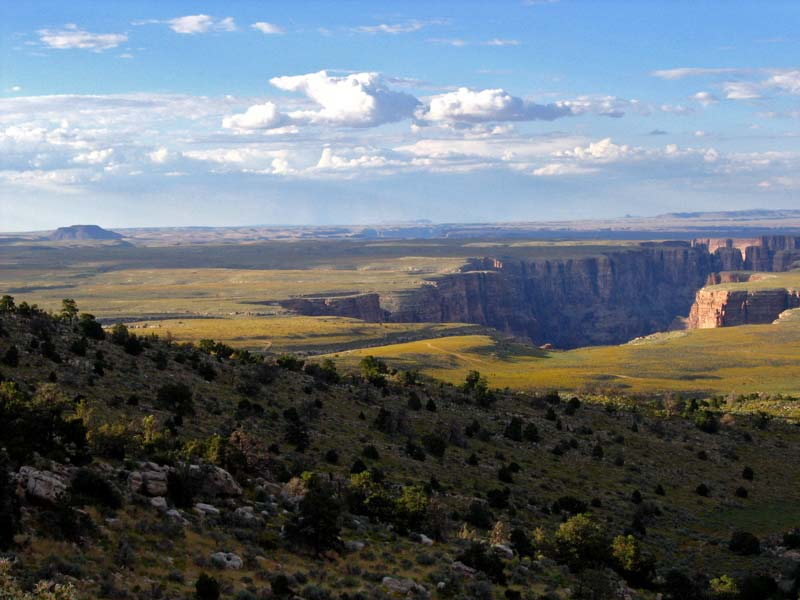 Canyons en mesas - Aperitief plateau huis van de wereld ...